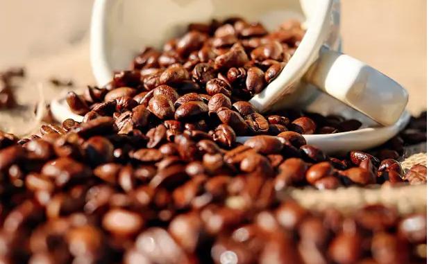 quotazione caffe